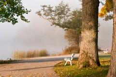 Herbstmorgen Stockfotos