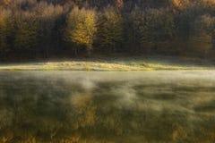 Herbstmorgen in dem See nahe einem Wald Stockbilder