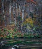 Herbstmorgen nahe Vilnele-Fluss stockbild