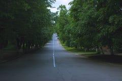 Herbstmorgen am Park Lizenzfreie Stockfotografie