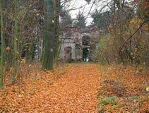 Herbstmotiv Stockbilder