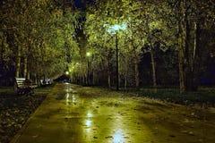 Herbstnacht im Stadt Park Lizenzfreie Stockfotos
