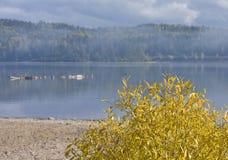 Herbstnebel über See Stockfotos
