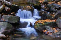 Herbstnebenflußnahaufnahme stockfotografie