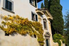Herbstniederlassungen auf einer Hausfassade Lizenzfreie Stockfotos