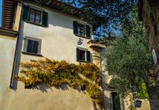 Herbstniederlassungen auf einer Hausfassade Stockbild