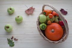 Herbstobst und gemüse - Stockfotografie