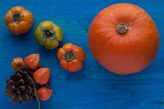 Herbstobst und gemüse -: Kürbis und Persimone auf dem blauen Hintergrund Stockfotografie