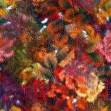 Herbstoffensive Stockfoto