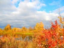 Herbstpalette Stockbilder