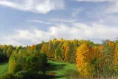 Herbstpalette Stockfoto