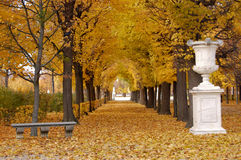 Herbstpark Stockfotos