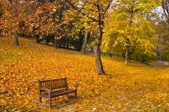 Herbstpark Lizenzfreie Stockbilder