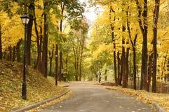 Herbstpark Lizenzfreies Stockfoto