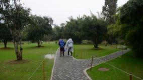 Herbstpark in Changsha stock video footage