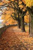 Herbstpark in Krakau lizenzfreie stockfotografie