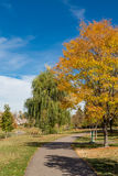 Herbstparkgehweg Lizenzfreie Stockfotos