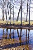 Herbstparklandschaft mit Teich stockbild