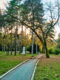 Herbstparkszenen Stockfotos