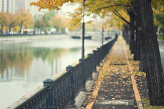 Herbstpfad durch städtischen Fluss Stockfotografie