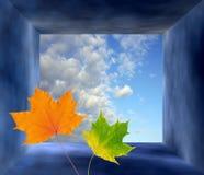 Herbstphantasiefeld Stockbild