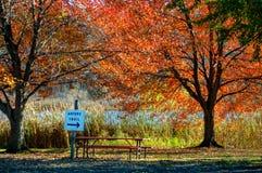 Herbstpicknicktisch und -spur Stockbild