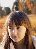 Herbstporträt Stockbilder