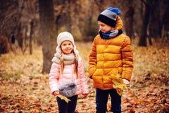 Herbstporträt des glücklichen Kinderspielens im Freien im Park Lizenzfreie Stockfotografie