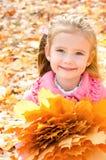 Herbstporträt des netten lächelnden kleinen Mädchens mit Ahornblättern Lizenzfreie Stockbilder