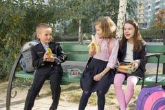 Herbstporträt von Kindern mit Brotdosen, Schulrucksäcke stockbilder