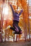 Herbstrütteln lizenzfreies stockbild