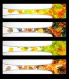 Herbstrabattverkaufsfahnenplakat-Auszugsflugblatt vektor abbildung