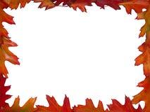 Herbstrahmen Lizenzfreies Stockfoto