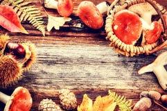 Herbstrahmen mit Waldpilzen lizenzfreies stockfoto