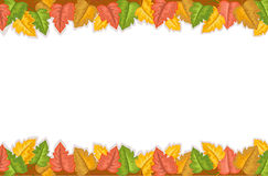 Herbstrand mit goldenen Blättern Stockfoto