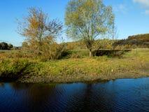 Herbstrandauslegung mit Eicheneicheln und -tageslicht Lizenzfreie Stockfotografie