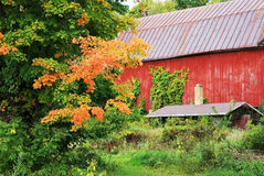 Herbstsaison an der Landschaft Lizenzfreies Stockfoto
