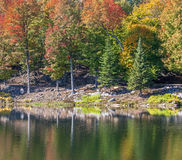 Herbstsaison in Quebec, Kanada Lizenzfreie Stockbilder
