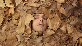 Herbstsaisonhusten stock footage