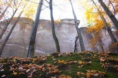 Herbstsandsteinfelsen Stockfoto