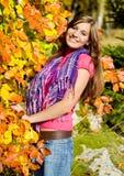 Herbstschönheit 19 Lizenzfreies Stockbild