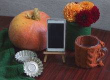 Herbstschablone mit Kürbis, Dahlien Lizenzfreie Stockfotos