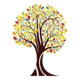 Herbstschattenbild eines Baums mit farbigen Blättern Getrennt auf weißem Hintergrund Vektor Stock Abbildung