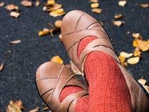 Herbstschuhe lizenzfreie stockfotografie