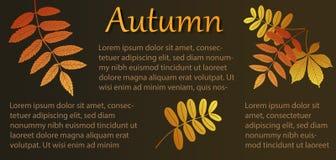Herbstseite mit Blättern und tex Lizenzfreie Stockfotos