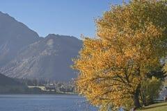 Herbstsonne am See Achensee Stockbilder