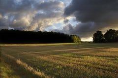 Herbstsonnenuntergang Lizenzfreies Stockfoto