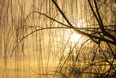 Herbstsonnenuntergang Lizenzfreie Stockfotografie