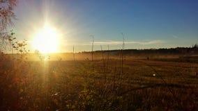 Herbstsonnenuntergangfeld Lizenzfreie Stockfotos