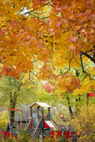 Herbstspielplatz Lizenzfreie Stockbilder